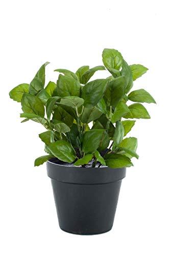 artplants.de Basilico Finto LUCANO, Verde, 25cm, Ø20cm - Basilico Artificiale - Erba Finta