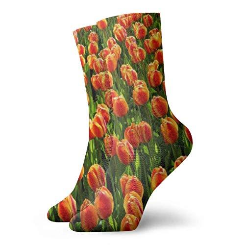 Kteubro Unisex High Ankle Cushion Crew Socks Tulip Oil Painting Casual Sport Socks