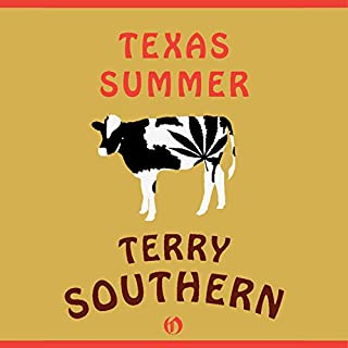 Texas Summer audiobook cover art