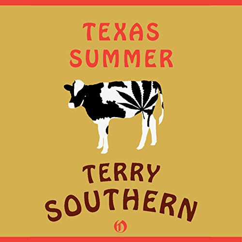 Texas Summer audiobook cover art