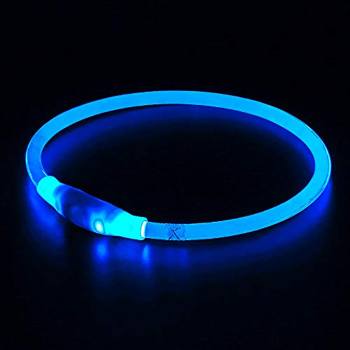 BSEEN LED Dog Collar, USB Rechargeable, Glowing pet Dog Collar for Night Safety, Fashion Light up Collar for Small Medium Large Dogs (Royal Blue)
