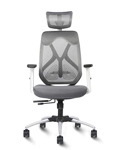 Exclusiff ® Zen High Back White Grey Mesh Executive Ergonomic Office Chair with Multi Lock Seat Slider, 2 Dimensional Adjustable Arm Rest and Headrest(Nylon, White Body with Grey Mesh)