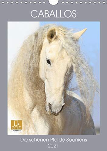 Caballos - Die schönen Pferde Spaniens (Wandkalender 2021 DIN A4 hoch)