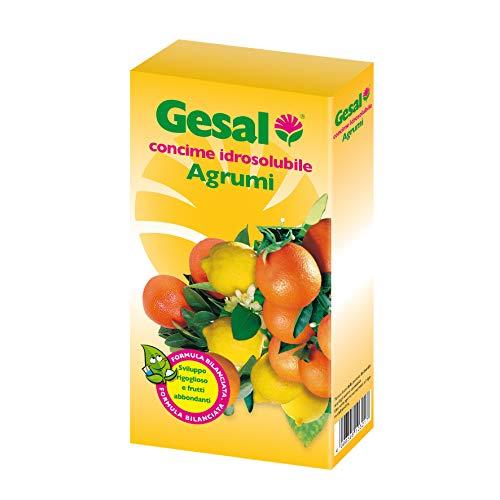 GESAL Concime Idrosolubile Agrumi, Per uno Sviluppo rigoglioso e Frutti abbondanti, 350 g