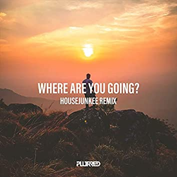 Where Are You Going (Remix)