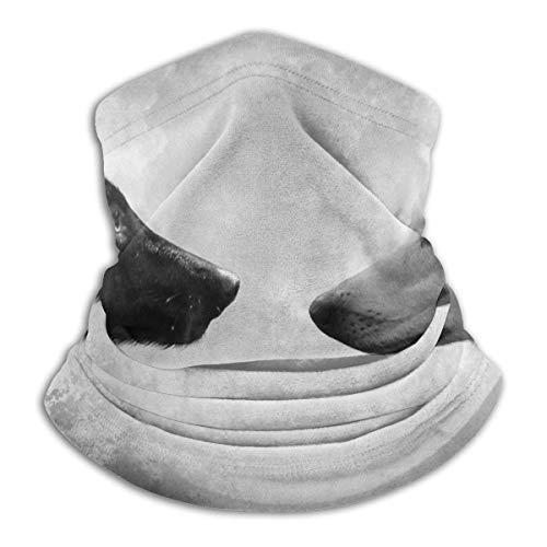 Linger In Multifunktionshalsschal Schwarz Weiß Mond Wolf Skibezug Schal Winddicht Sport