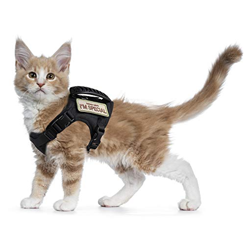 Tactical Cat Harness for Walking Escape Proof, Soft Mesh Adjustable Pet Vest Harness for Large Cat,Small Dog and Rabbit