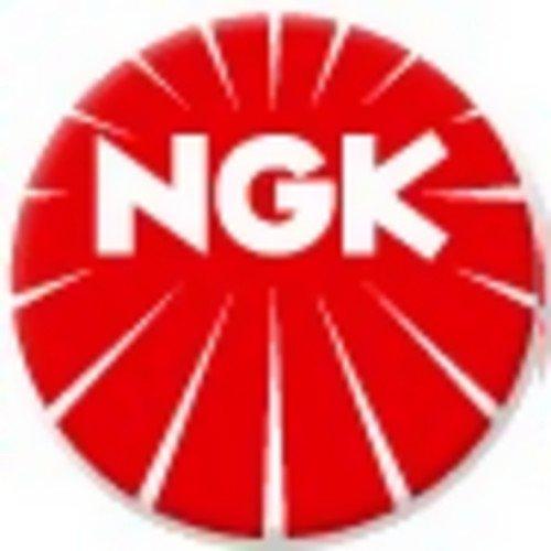 NGK 1406 Spark Plug