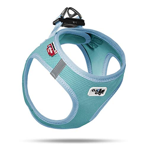 Curli Harness Jacke Air-Mesh Limited Edition 2020 Lagoon (S)