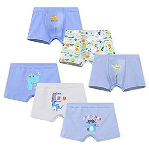 Allmeingeld – Calzoncillos bóxer de algodón para niños (6 Unidades, para 2 a 10 años)