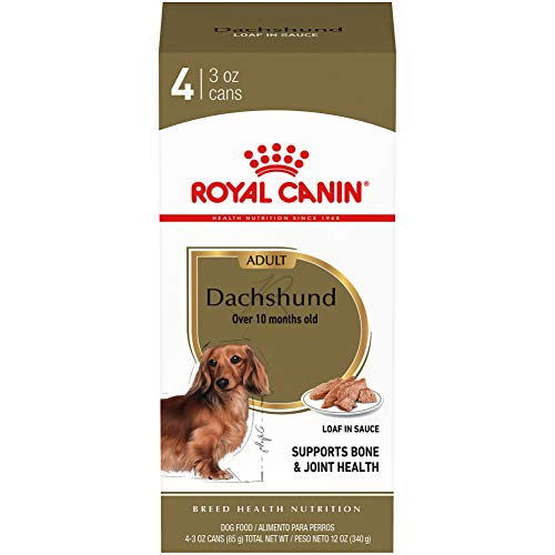 Royal Canin Adult Dachshund Canned Dog Food