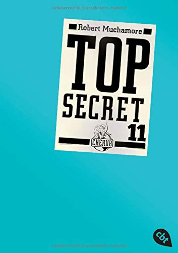 Top Secret 11 - Die Rache (Top Secret (Serie), Band 11)