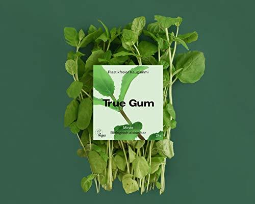 True Gum 10er SET: Minze | Plastikfreier Kaugummi | Biologisch Abbaubar | Vegan | 10 x 21 g, 210 g, TRGU210