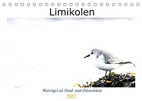 Limikolen - Watvögel an Nord- und Ostseeküste (Tischkalender 2022 DIN A5 quer)