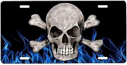 onestopairbrushshop Skull Crossbones License Plate