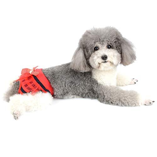 Ranphy - Pañales Lavables para Perros pequeños, con Lazo y Nudo para Cachorros, Reutilizables y Transpirables, Suaves con Agujero para la Cola, Ropa Interior para Mascotas Chihuahua Teddy Bichon