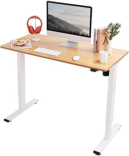 FLEXISPOT EC1 Escritorio de Pie con Tablero (Arce, 120X60cm), Standing Desk, Escritorio Eléctrico...