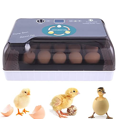 ROVSUN Egg Incubator, 12-35 Eggs Digital Poultry Hatcher Machine with Automatic Turning and Temperature & LED Egg Candler for Chicken Duck Bird Quail Goose