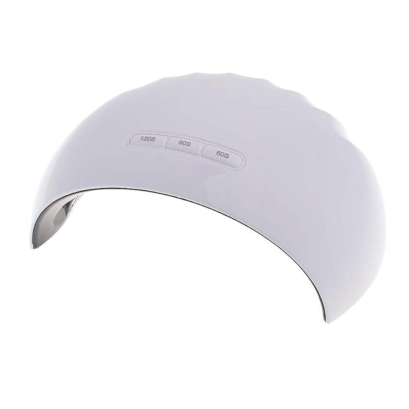 アイザックアクセサリーきょうだいB Blesiya LEDネイルランプ  ネイル硬化 UVネイル 爪乾燥機 ネイル道具 2タイプ選べ  - 24W