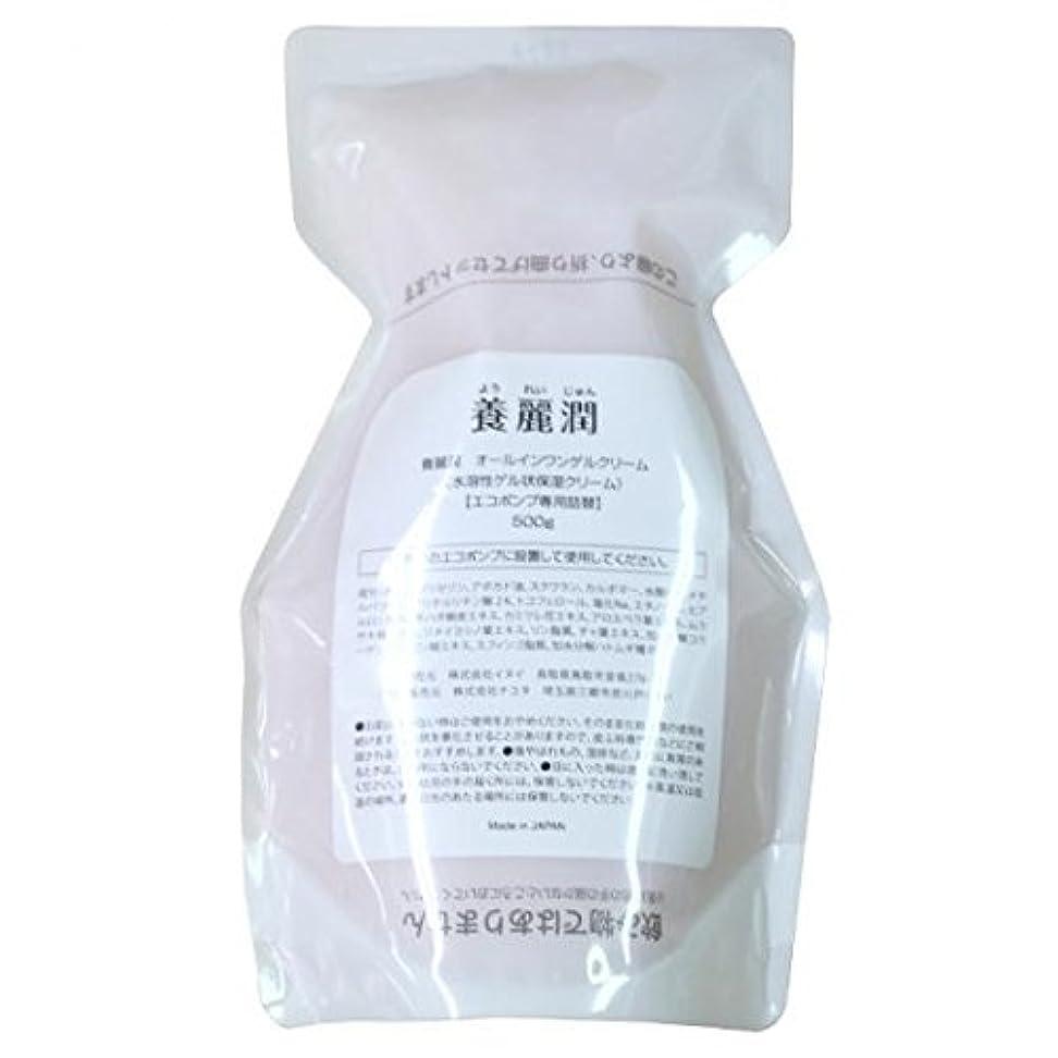 初期の離婚紫の養麗潤(ようれいじゅん) 詰め替え用500g