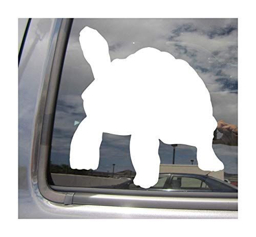 Lplpol Galapagos Riesige Schildkröte Charles Darwin Cars Trucks Moped Helm Auto Automotive Craft Laptop Vinyl Aufkleber Fenster Wand Aufkleber 15,2 cm