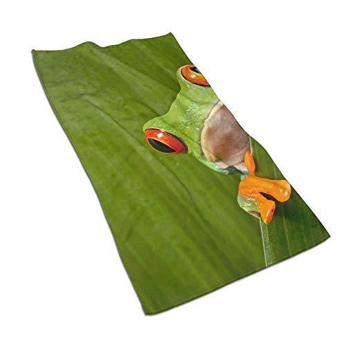 XCNGG Red Eyed Tree Frog Toallas de Plato Brillantes Toalla de té Toallas de Cocina de Microfibra Toalla Multiusos para baño Hotel SPA Gimnasio 27,5 x 15,7 Pulgadas
