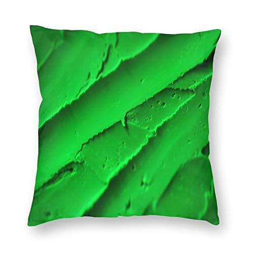 Fuliya, federe per cuscino 45 cm x 45 cm, 1 confezione da cuscini quadrati decorativi per divano soggiorno, verde, consistenza, superficie, acido