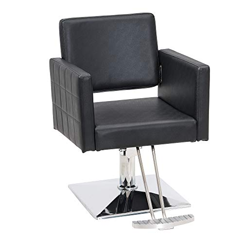 BarberPub Salon Chair for Hair Stylist, All Purpose Hydraulic Barber Styling Chair, Beauty Spa Equipment 8821