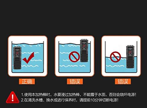 Daxiong 822-880-247