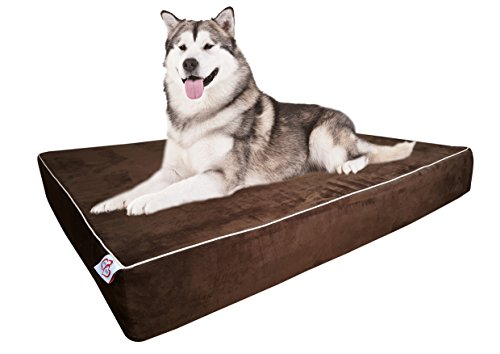 OnePet-TwoPet Large Dog Bed