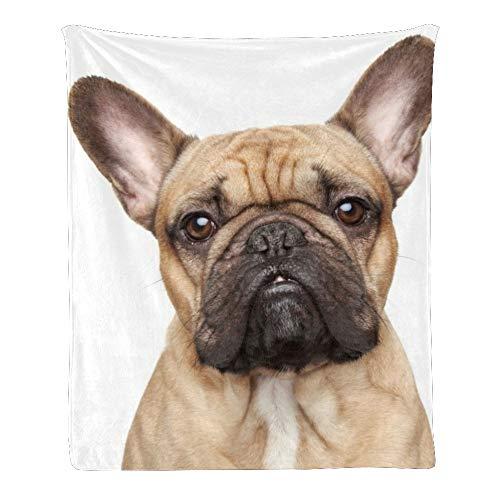 CUXWEOT Custom Super Soft Throw Blanket Fleece Blanket for Couch Sofa Bed Gift French Bulldog (50inchX60inch)