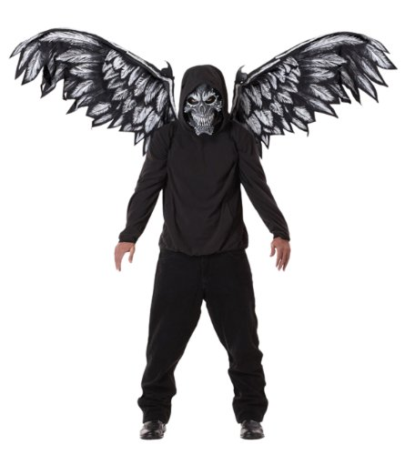 California Costumes mens Fallen Angel Mask & Wings Adult Sized Costumes, Black, One Size US