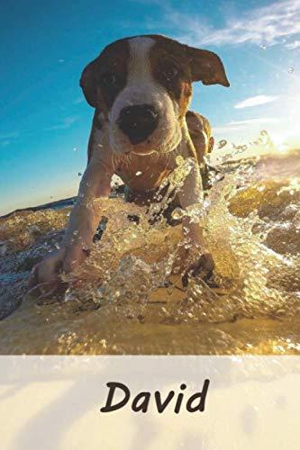 David: Personalisiertes blanko Notizbuch / Malbuch mit Namen: David - individuelles Namensbuch mit Hunde Motiv | perfekt als Geschenkidee