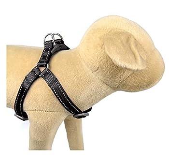 Black Core Reflective Dog Harness - Boots & Barkley  Medium