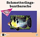 *Schmetterlingsbuntbarsche (Aqualog mini)