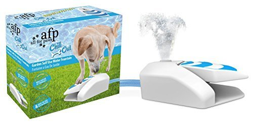 Chill Out - Garden Water Fountain by All Four Paws