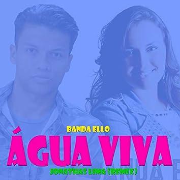 Água da Vida (Remix)