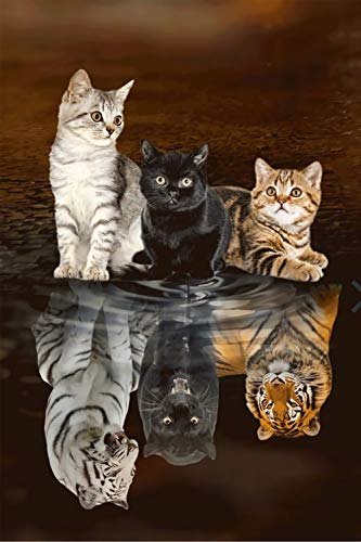 GAGALAM 3D Puzzel Für Erwachsene 3 Katzen Reflexionstiger Home Art Deco-Malerei