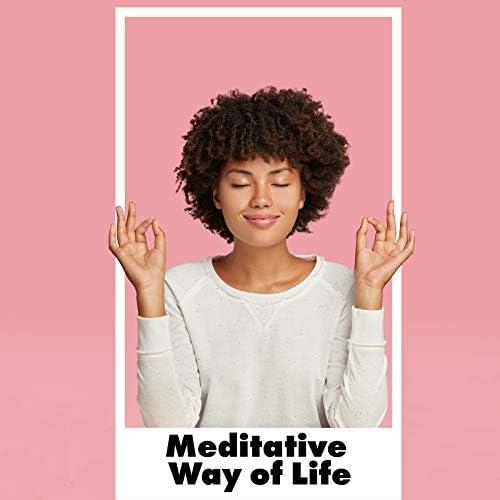 Mindfulness Meditation Academy & Slow Life Movement