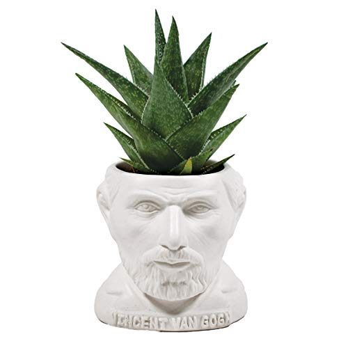 Maceta suculenta de The Unemployed Philosophers Guild Vincent Van Gogh Busto – Maceta para pequeños cactus, flores, hierbas y más