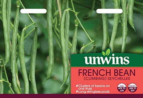 Unwins 31210105 Graines de haricot de runner (nain) Transparent