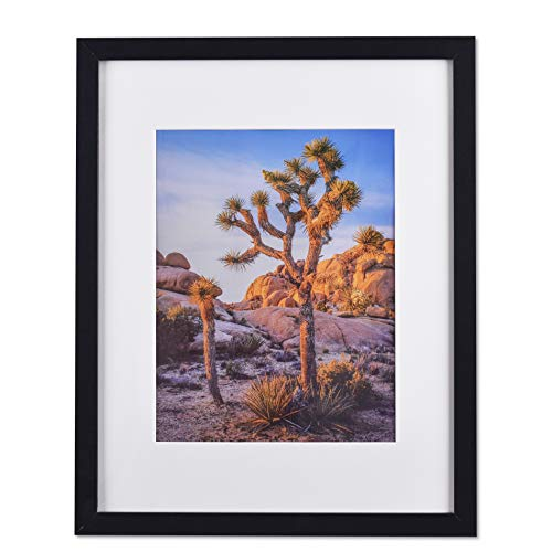 """Black 20""""x24"""" Photo Frame matted to 16""""x20"""" Photos, picture frame 20x24"""