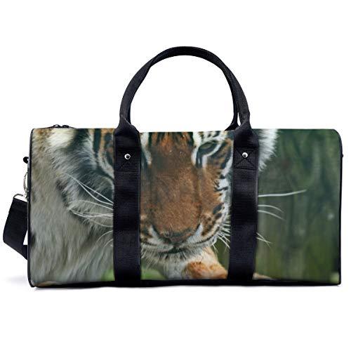 Bolsa deportiva para gimnasio, diseño de ojos de tigre y depredador, con rayas, bolsa de hombro, bolsa de viaje, bolsa de viaje para hombres y mujeres