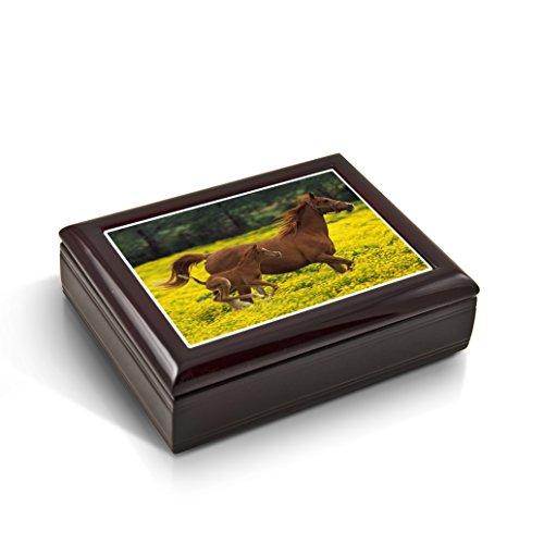 MusicBoxAttic Boîte à Bijoux Musicale avec Inscription « Mother and Baby Horse (Foal) in The Prairie Tile » – Plus de 400 chansons – I Left My Heart in San Francisco