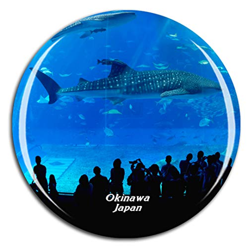 Weekino Churaumi Aquarium Okinawa Japan Kühlschrankmagnet 3D Kristallglas Touristische Stadtreise City Souvenir Collection Geschenk Starker Kühlschrank Aufkleber