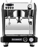 OGUAN Máquina de café, Cafetera semiautomática Comercial Italiana de Vapor Bomba Cafetería Internet Cafe Filtro de café,