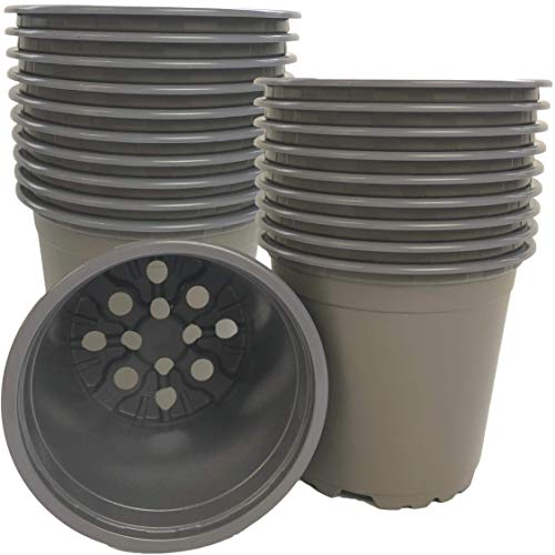 20 x Recycled Plastic Plant Pots Outdoors – 10.5cm Diameter, 1/2ltr Volume. Indoor Use Too. For Potting Growing Seedlings, Flowers and Plants Ready For Your Garden. Fully Recyclable Grey Colour