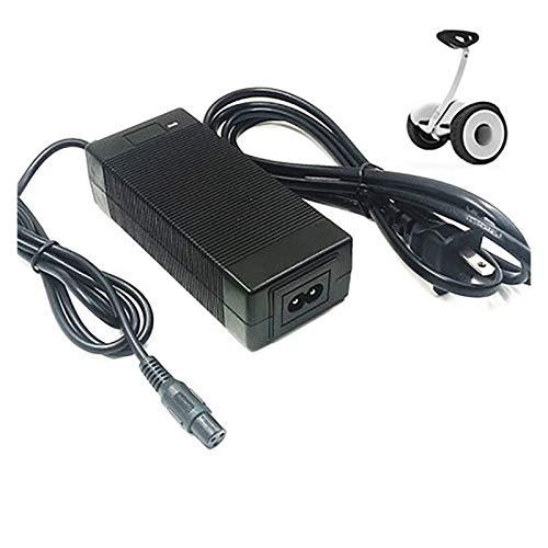 Cargador De Batería De Iones De Litio 36V 2A Voltaje De Entrada, Adaptador De Batería De Triciclos para Scooter Eléctrico, Cargador De Batería De Iones De Litio para Bicicleta Eléctrica (Size : C)