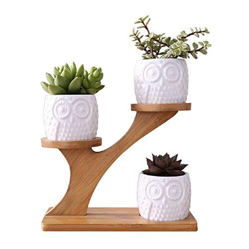 QWER Plant Stands Soporte para Flores Escritorio Bambú Soporte Maceta
