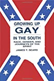 Growing Up Gay in the South (Gay & Lesbian Studies)